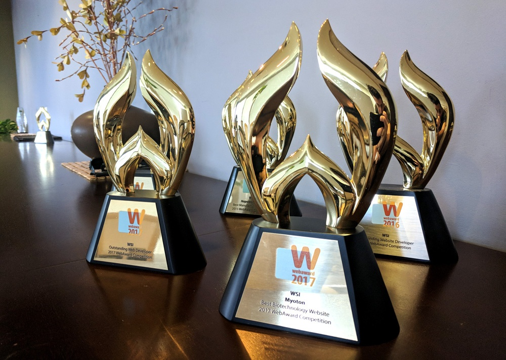WMA Awards - 2017