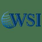 WSIWorld-favicon_2017