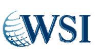 WSI is a lead Digital Marketing Agency